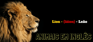 Animais em Inglês